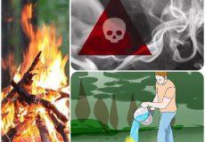 توصیه های ایمنی در مورد آتش سوزی های جنگل و مراتع