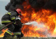 آتش سوزی زمین کشاورزی