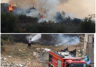 آتش سوزی گسترده جنگل